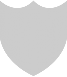 The shield shape that is part of the symbol from the Loving Day logo